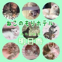若返りの湯 栃尾温泉ホテル明日香